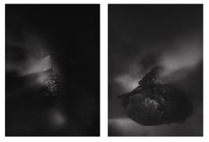 The Mist by James Stringer